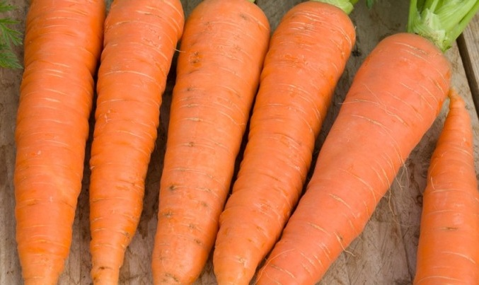 carroteel