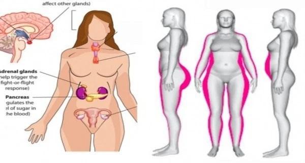 desequilibre-hormonal-femme